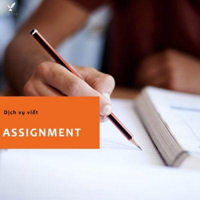 Dịch vụ viết bài Assignment