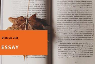 Dịch vụ viết Essay – viết Tiểu Luận tiếng anh